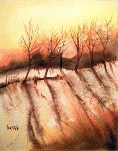 à l'ombre des arbres