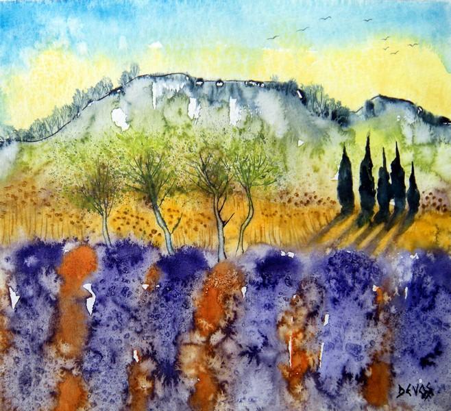 Lavandes en Provence dans aquarelle lavandes-en-provence-20x19
